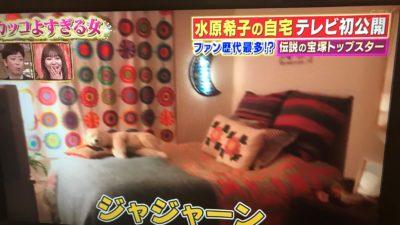 水原希子の部屋